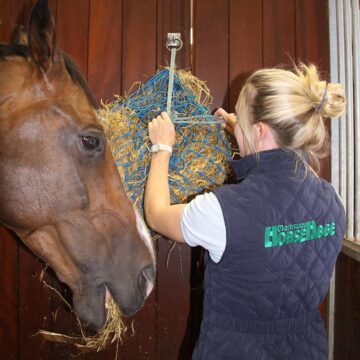 Top Up Your Horse's Forage For The Night Shift!