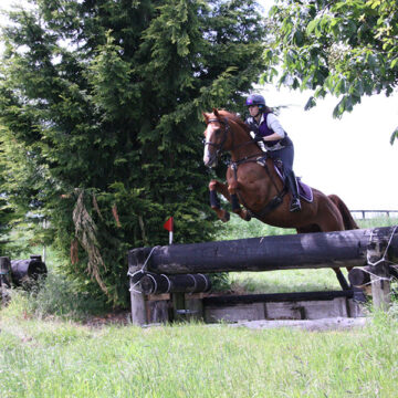 Foot Perfect for Ex-Racehorses with Mollichaff HoofKind Complete