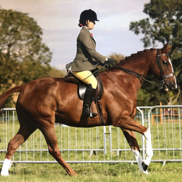 A Winning Shine for Ginger Biscuits from Mollichaff