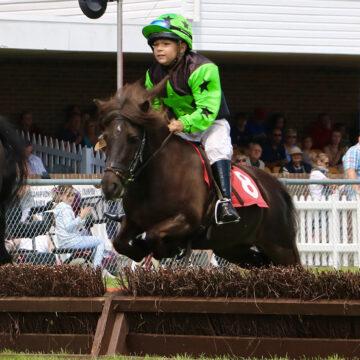 Young Gun Alfie Races Ahead With HorseHage