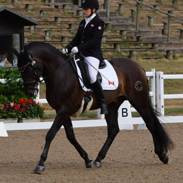 Bert Sheffield Selected For Canadian Para Team for FEI World Equestrian Games 2018