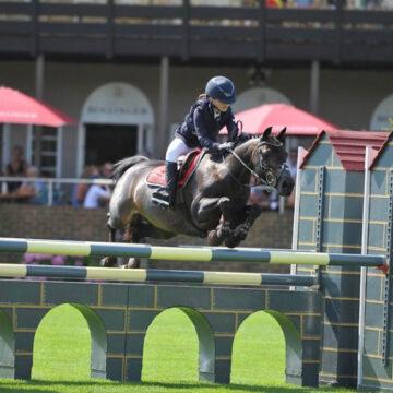 Pony Success with Mollichaff Donkey!