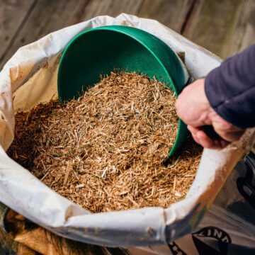 Why Feed Chaff to Horses?