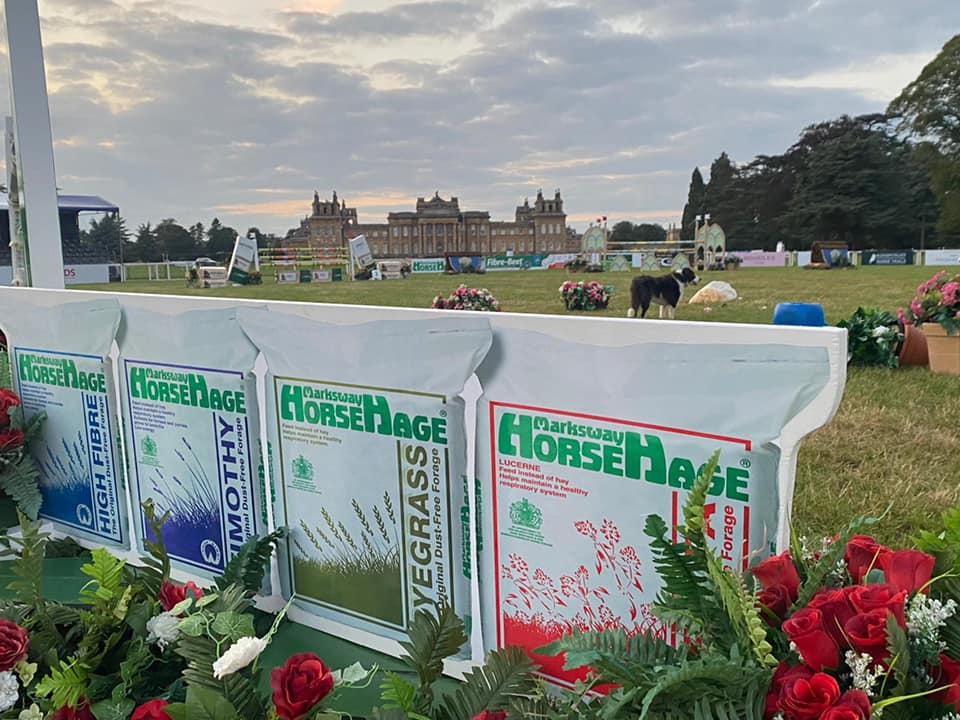 HorseHage sponsors Blenheim Palace International Horse Trials 2021
